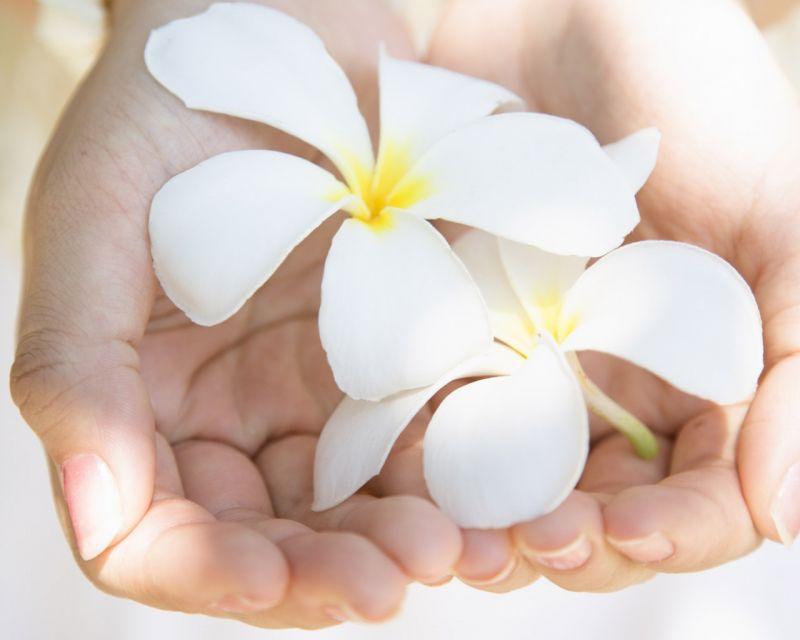 Лечебно-оздоровительный точечно-биоэнергетический массаж