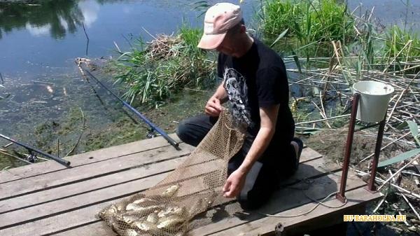 форум рыбалка бесплатная краснодар