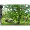 Продается земельный участок  с домом в Бессоновском районе
