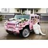 Требуются автомашины на свадьбу