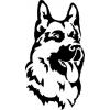 дрессировка собак в Краснодаре