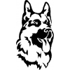 Гостиница для собак вКраснодаре