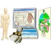Аппарат Биотест для диагностики по методу Фолля. Программа Пересвет Фолль. Курсы в НМЦ Пересвет