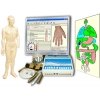 Диагностика по Фоллю Пересвет. Метод Накатани, гомеопатия, аурикулодиагностика, рефлексотерапия. Комплекс АРМ Пересвет