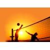 секция волейбола для взрослых