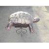 черепаха металлическая
