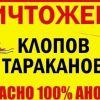 ШОКИРУЮЩАЯ ПРАВДА О КЛОПАХ!